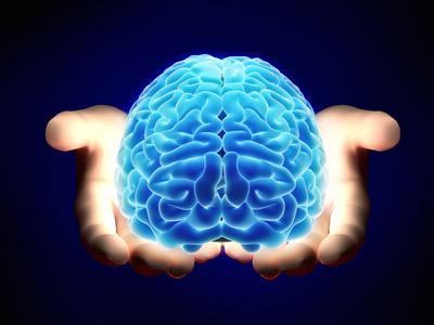 brain-in-hand-copy